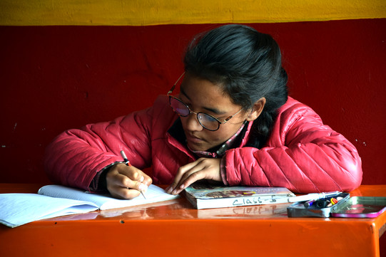 Himalaya's Children Patenschaft