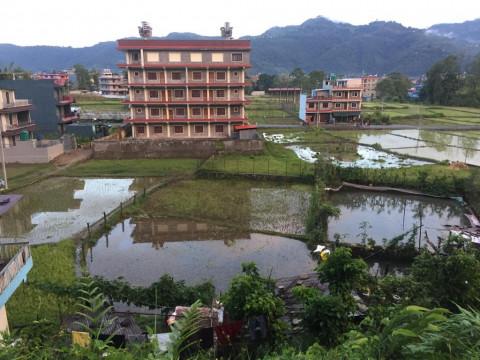 Land hinter dem Studentenheim