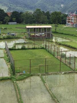 Das Fussballfeld steht mitten drin